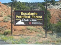 Site - Escalante Petrified Forest State Park