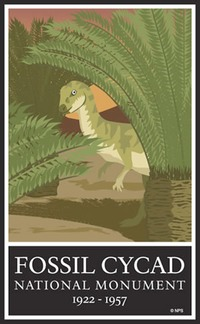 Site - Fossil Cycad RIP