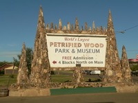 Site - Petrified Wood Park