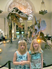 Rockhounding California | Gator Girl Rocks